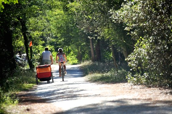 Get on your bike this summer in France